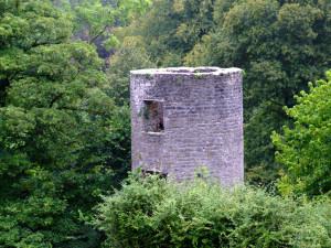 Корк # Замок Бларни в Корке и Камень Судьбы-pic02
