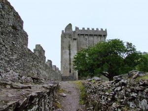 Корк # Замок Бларни в Корке и Камень Судьбы-pic04