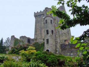 Корк # Замок Бларни в Корке и Камень Судьбы-pic05