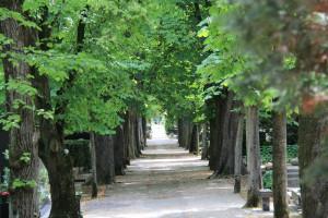 Загреб # Кладбище Мирогой в Загребе-pic08