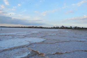 Ларнака # Легенда о Соленом озере-pic04