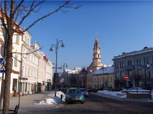 Вильнюс # Улица Диджёйи-pic03