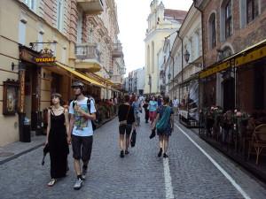 Вильнюс # Улица Диджёйи-pic05